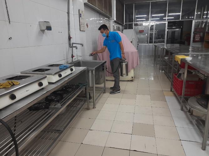 dịch vụ diệt côn trùng ở Đà nẵng
