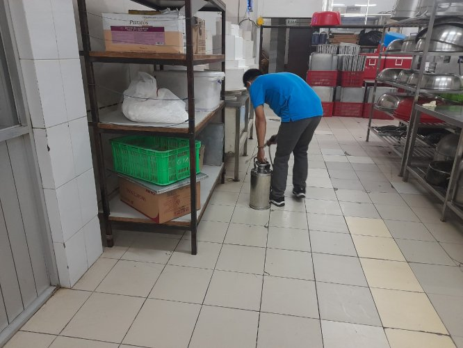 dịch vụ diệt côn trùng tại Củ Chi
