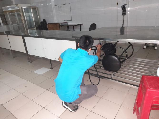 dịch vụ diệt gián tại nhà ở Đà nẵng